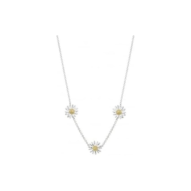 Daisy London Three New Daisy Chain Necklace in Silver - N2015