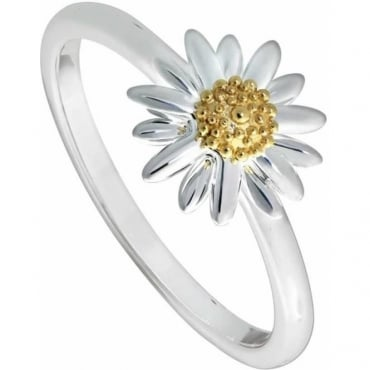 New Daisy Ring - SR512