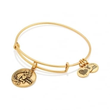Aquarius Charm Bangle