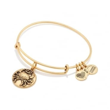 Cancer Charm Bangle