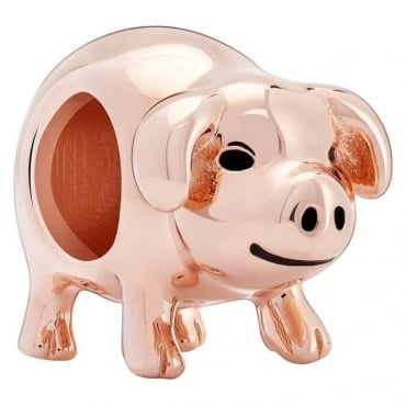 Chamilia Piggy Bank 2020-0831