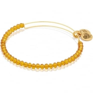 Aurelia Brilliance Beaded Bangle