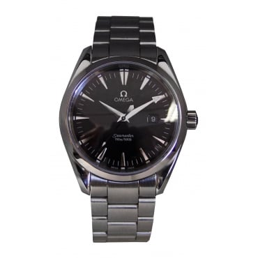 Men's Stainless Steel Aquaterra Watch.
