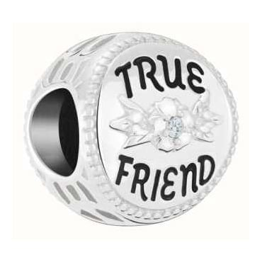 True Friend Disc 2025-2470